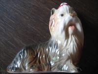 süßer Hund Yorkshire Terrier Yorkie Porzellan Thüringen um 1920 Figur groß