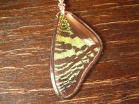 Schatz der Natur Anhänger Schmetterlingsflügel H 925er Silber Kette Eco Friendly