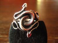 exklusiver Schlangen Ring Schlange Double Snake Gothic 925er Silber et Nox RG 62
