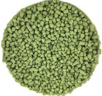 Hopfen-Pellets Hallertau Mittelfrüh 4, 4% alpha 50g Typ 90 Aromahopfen Brauen