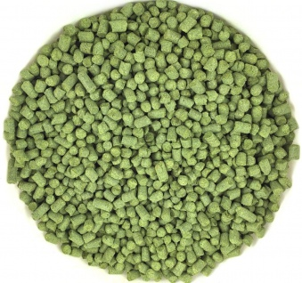 Hopfen-Pellets Hallertau Perle 7, 9% 100g Typ 90 Aromahopfen Bier brauen