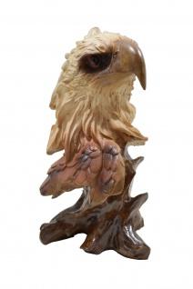 Weißkopf Adler Büste Kopf Vogel Falke Seeadler Deko Garten Tier Figur Steinadler