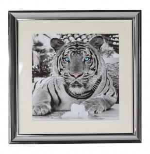 Wandbild Bild Tiger weiß Wandekoration Wandschmuck Wanddeko Deko Figur 45 x 45