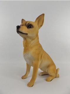 Chihuahua Hund Deko Garten Tier Figur Chiwawa Terrier Skulptur Statue Wildhund