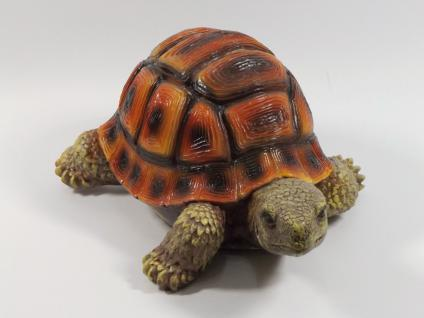 Schildkröte Landschildkröte Deko Kröte Garten Tier Figur Skulptur Teichfigur