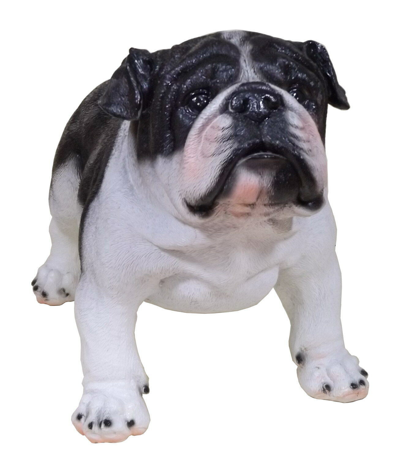 Großartig Englisch Bulldog Färbung Seiten Ideen - Ideen fortsetzen ...