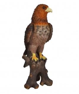 Bussard Falke Steinadler Adler Vogel Seeadler Deko Garten Tier Figur Greifvogel