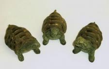 Schildkröte 3 Stück Landschildkröte Deko Kröte Tier Figur Skulptur Reptilien