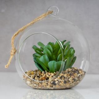 4er Set Sukkulenten Glas 10x12cm Pflanze Grün Tischdeko Kunstpflanze Deko - Vorschau 4