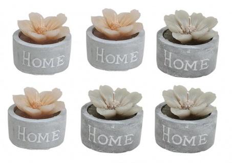 6er Set Kerzen Blume B x H: je 4, 5x4cm Home Beton Zement Deko Teelicht