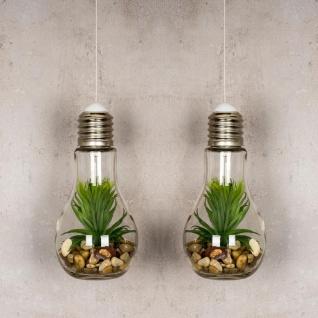 2er Set LED Glühbirne Sukkulenten H19cm Grün Deko Lampe Kunstpflanze Tischdeko - Vorschau 2