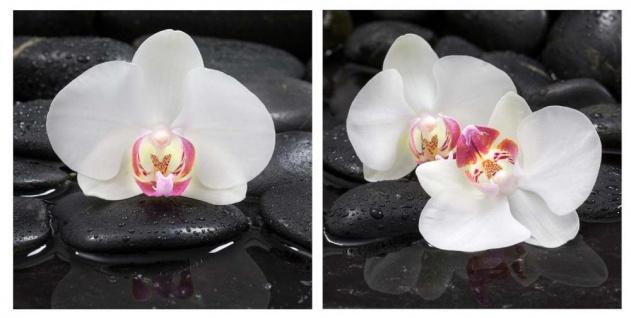 levandeo Glasbild 2er Set je 30x30cm Wandbild Glas Orchideen Blume Steine