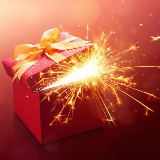 Weihnachts-Dekoration Überraschungspaket 100 Euro - 50 Euro geschenkt