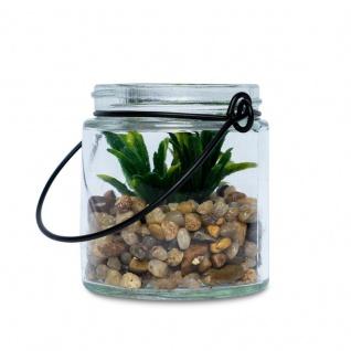 4er Set Sukkulenten Glas 6x7cm Pflanze Grün Tischdeko Kunstpflanze Deko - Vorschau 4