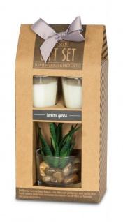 Duftkerze Geschenkset Vanille Lemongras Düfte Kerzen Sukkulenten Deko - Vorschau 3