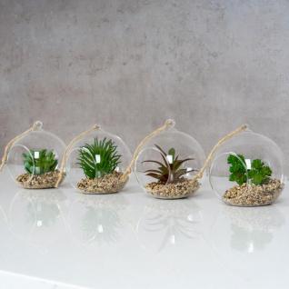 4er Set Sukkulenten Glas 10x12cm Pflanze Grün Tischdeko Kunstpflanze Deko - Vorschau 3
