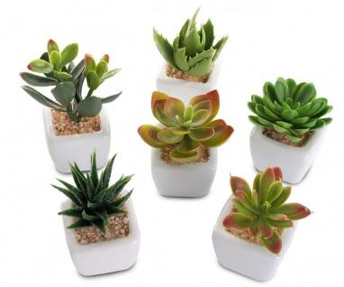 6er Set Sukkulenten B x H 4, 5x9cm Kunstpflanze Grün Weiß Kunstblume Dekoration