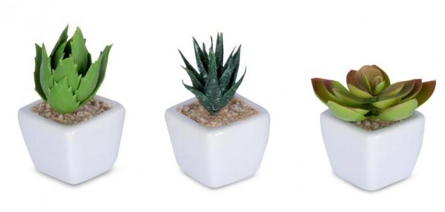6er Set Sukkulenten B x H 4, 5x9cm Kunstpflanze Grün Weiß Kunstblume Dekoration - Vorschau 3