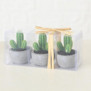 9er Set Kerzen Kaktus 5x7cm Tischdeko Dekoration Grün Wachskerze - Vorschau 4