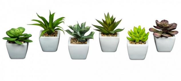 6er Set Sukkulenten B x H 10x17cm Kunstpflanze Grün Weiß Kunstblume Tischdeko