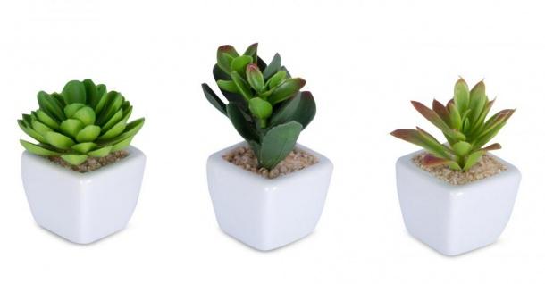 6er Set Sukkulenten B x H 4, 5x9cm Kunstpflanze Grün Weiß Kunstblume Dekoration - Vorschau 4