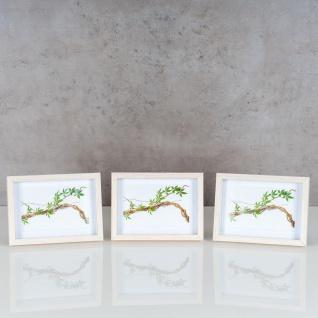 3er Set Bilderrahmen 10x15cm Eiche Natur Echtholz Fotorahmen Einzelrahmen Weiß