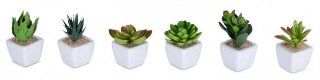 6er Set Sukkulenten B x H 4, 5x9cm Kunstpflanze Grün Weiß Kunstblume Dekoration - Vorschau 2