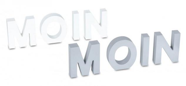 2er Set Schriftzug Moin Moin H12cm Buchstaben Tischdeko Aufsteller Wohndeko
