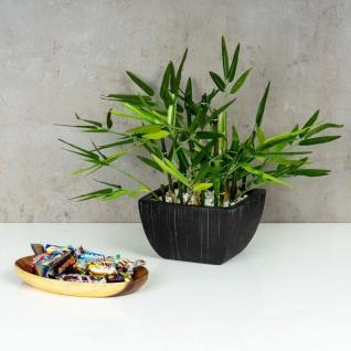 Holzschale Akazie 19cm Oval Design Snackschale Schale Obstschale Dekoschale - Vorschau 5