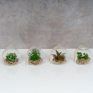 4er Set Sukkulenten Glas 10x12cm Pflanze Grün Tischdeko Kunstpflanze Deko - Vorschau 2