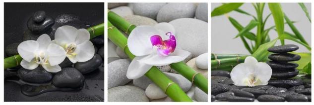 Wandbild 3er Set je 30x30cm Aluminium Dibond Orchideen Bambus Steine Deko