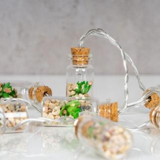 Lichterkette Innen 10 LED Lampe Sukkulenten Gläser Pflanzen Kunstpflanze Deko - Vorschau 4