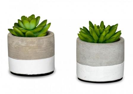 2er Set Sukkulenten Kunstpflanze Beton Zement Topf 10cm Kunstblume Grün