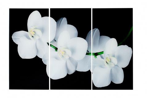 3er Wandbilder Set aus Glas je 60x30 Orchideen Feng Shui Wellness