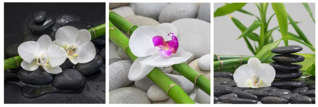 levandeo Glasbild 3er Set je 30x30cm Wandbild Glas Orchideen Bambus Steine Deko