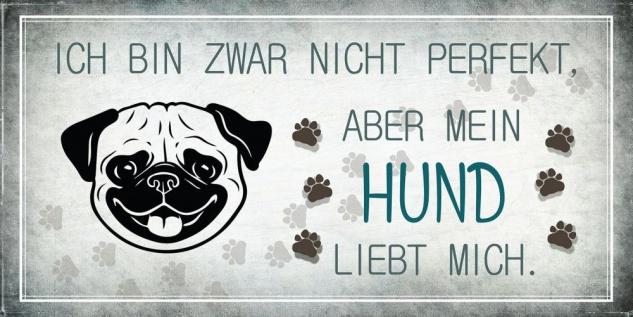 Wandbild 40x20cm Hund Spruch Deko Wandschild Hundeliebhaber Bild Wanddeko Deko