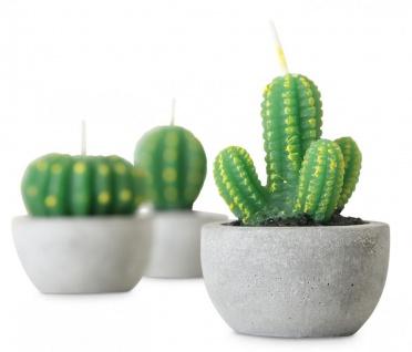 9er Set Kerzen Kaktus 5x7cm Tischdeko Dekoration Grün Wachskerze - Vorschau 3