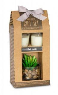 Duftkerze Geschenkset Vanille Lemongras Düfte Kerzen Sukkulenten Deko - Vorschau 2
