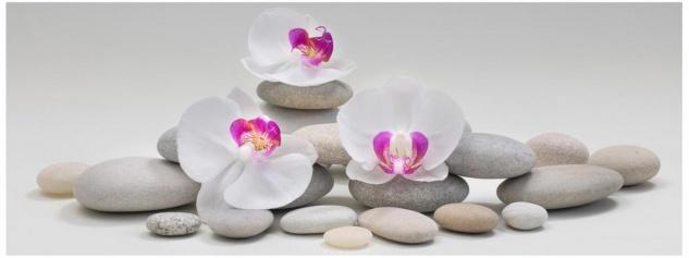 Glasbild 80x30cm Wandbild aus Glas weiße Orchideen Steine Wellness