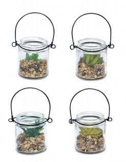 4er Set Sukkulenten Glas 6x7cm Pflanze Grün Tischdeko Kunstpflanze Deko