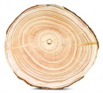 Baumscheibe Deko-Platte Ca. Ø 29cm Holz-Scheibe Naturbelassen Unikat