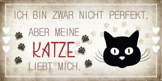 Wandbild 40x20cm Katze Spruch Deko Wandschild Katzenliebhaber Bild Wanddeko Deko