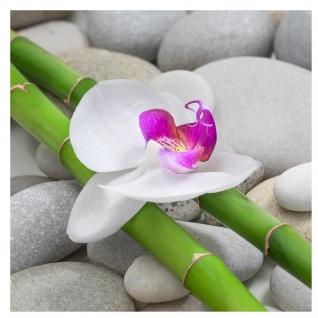 levandeo Glasbild 30x30cm Orchideen Wandbild Bambus Glas Wellness Relax