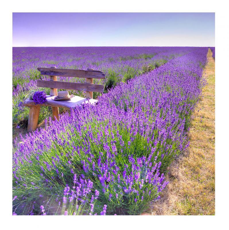 Deko Lavendel.Levandeo Glasbild 30x30cm Wandbild Glas Lavendel Feldweg Landschaft Deko