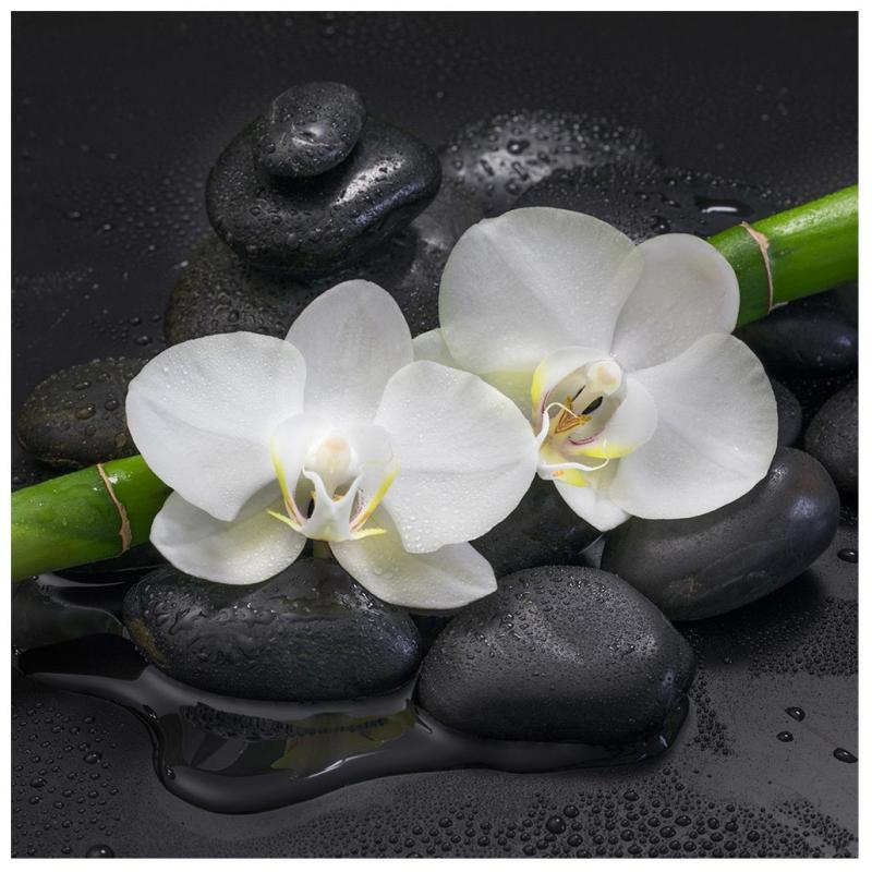 Levandeo Glasbild 30x30cm Wandbild Glas Orchideen Bambus Steine