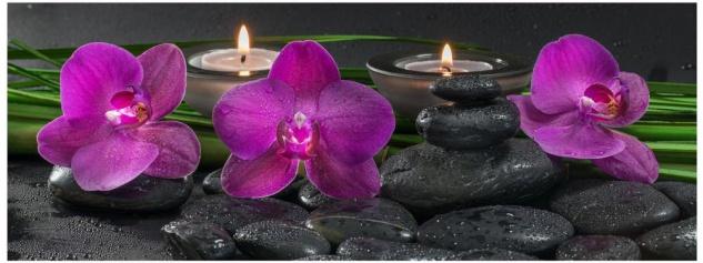 Glasbild 80x30cm Wandbild aus Glas rosa Orchideen Steine Wellness Deko