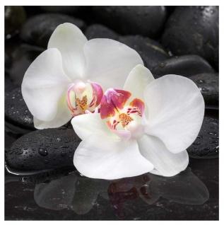 levandeo Glasbild 30x30cm Orchideen Weiß Steine Wellness Blume Wandbild Glas