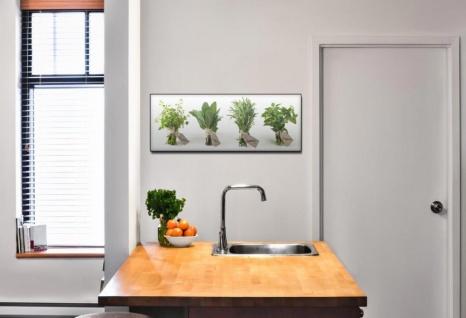 Glasbild 80x30cm Wandbild aus Glas Küche Gewürze Kräuter Deko - Vorschau 2