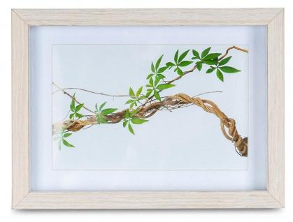 Bilderrahmen 10x15cm Eiche Natur Echtholz Fotorahmen Einzelrahmen Portraitrahmen