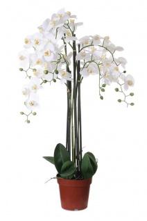Weiße Orchidee 115cm Pflanze Kunstblume Kunstpflanze Dekoration Blume